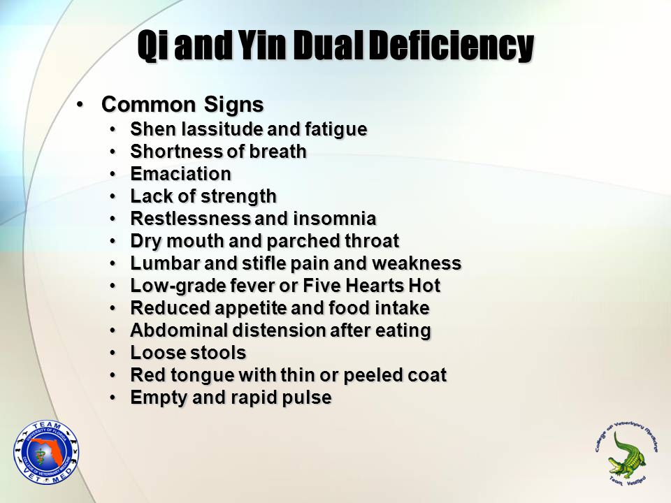 Qi and Yin Dual Deficiency