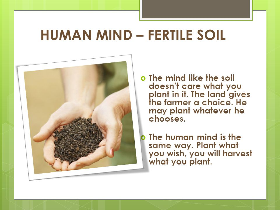 HUMAN MIND – FERTILE SOIL