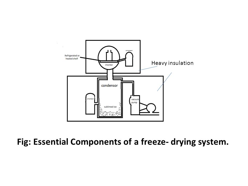 Fig: Essential Components of a freeze- drying system.