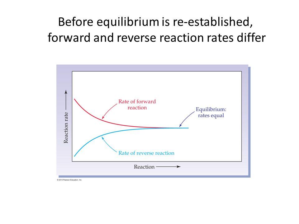Before equilibrium is re-established,