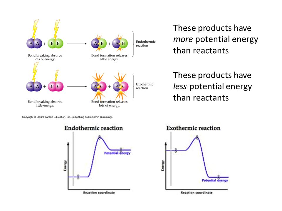 These products have more potential energy. than reactants. These products have. less potential energy.