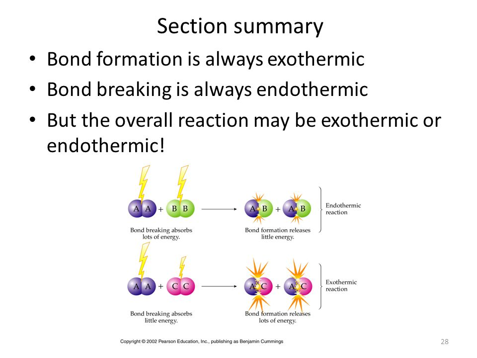 Section summary Bond formation is always exothermic