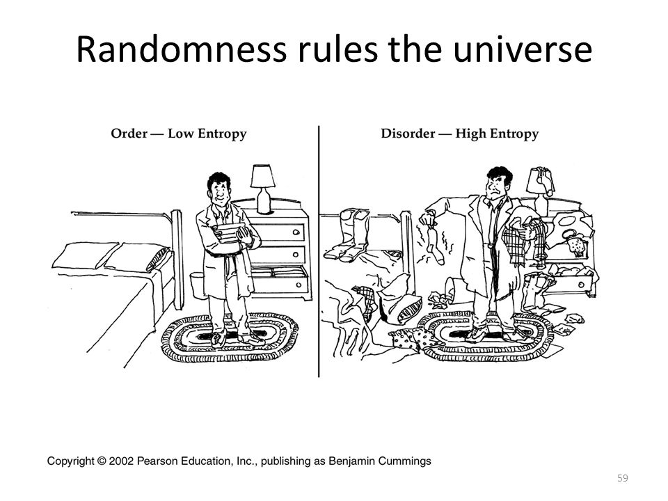 Randomness rules the universe
