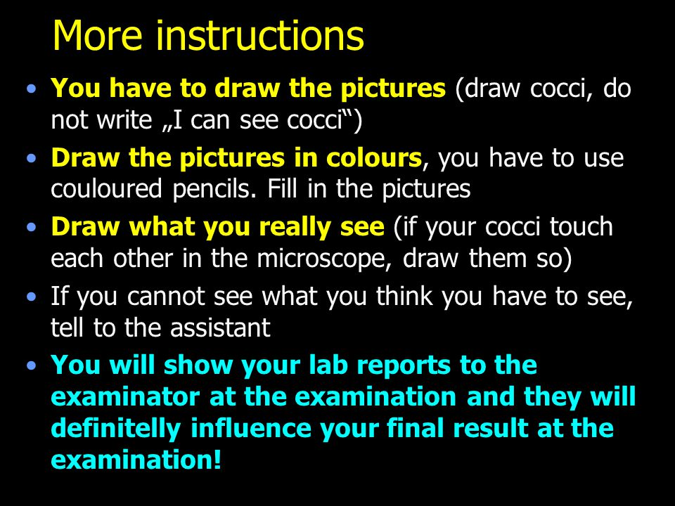 """More instructions You have to draw the pictures (draw cocci, do not write """"I can see cocci )"""