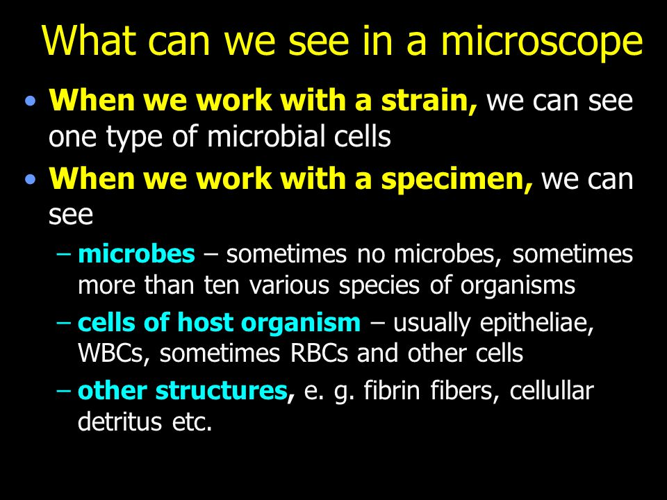 What can we see in a microscope