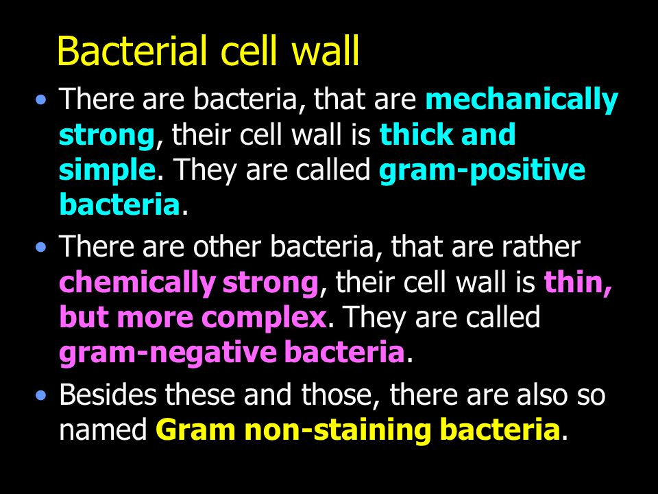 Bacterial cell wall There are bacteria, that are mechanically strong, their cell wall is thick and simple. They are called gram-positive bacteria.