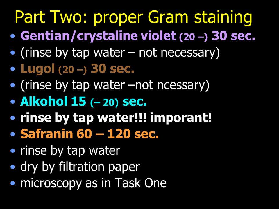 Part Two: proper Gram staining