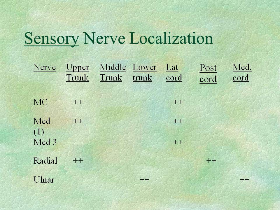 Sensory Nerve Localization