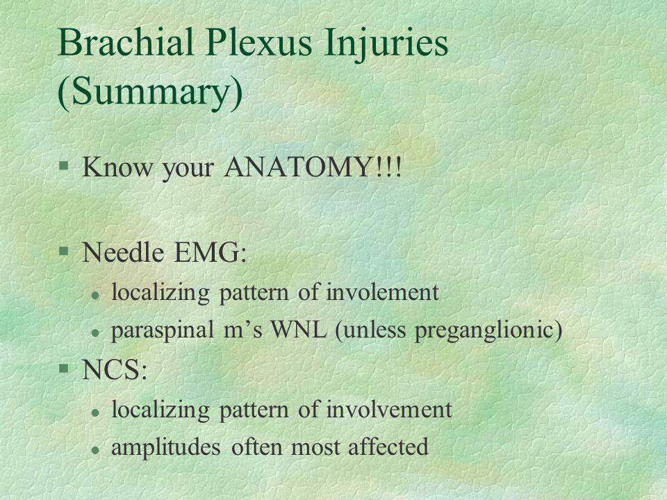 Brachial Plexus Injuries (Summary)