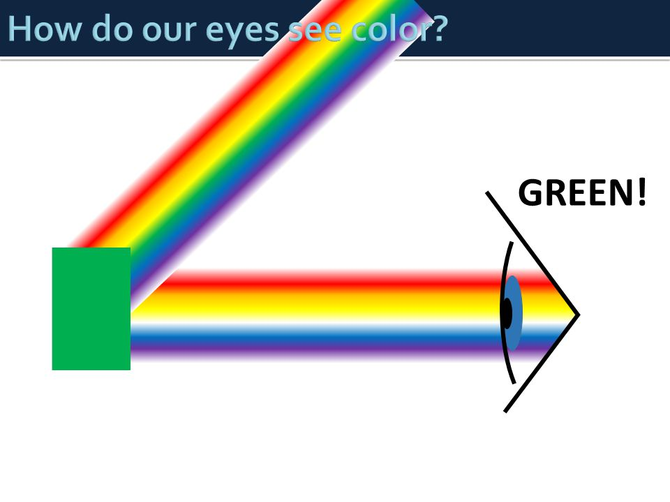 How do our eyes see color