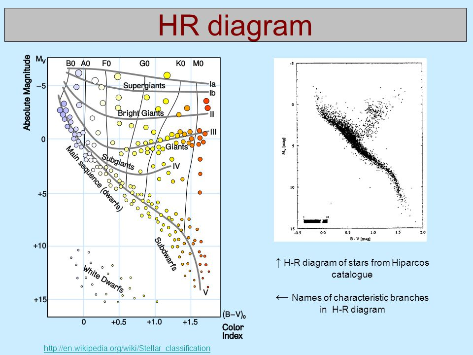 HR diagram ← Names of characteristic branches in H-R diagram