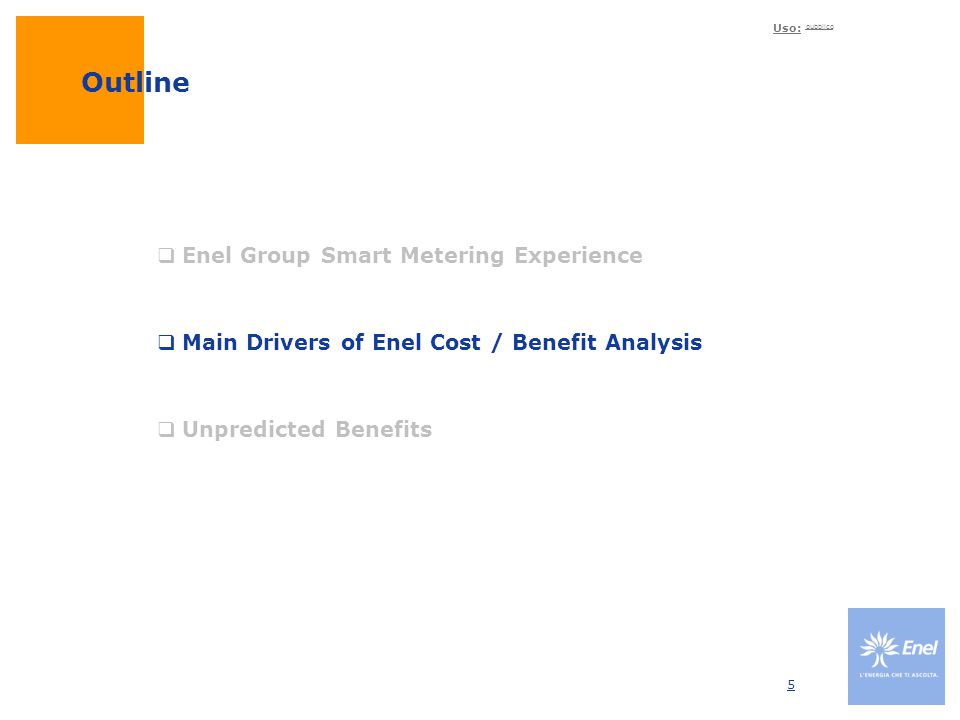 Outline Enel Group Smart Metering Experience