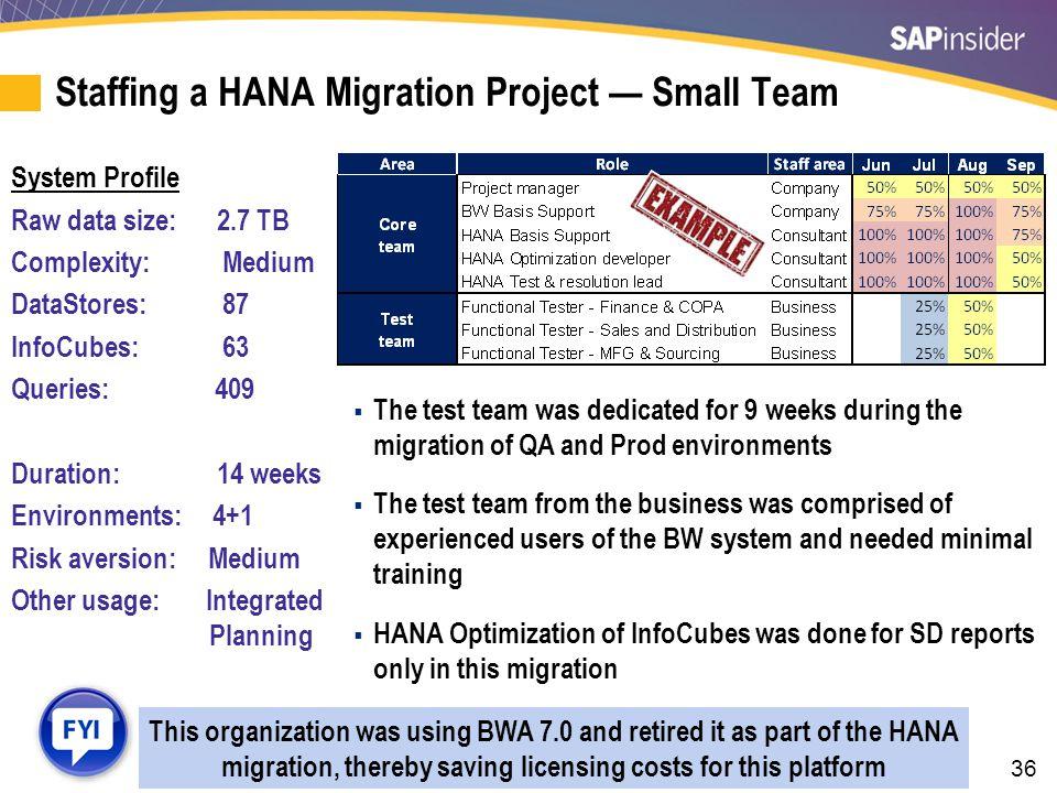 Staffing a HANA Migration Project — Medium Team