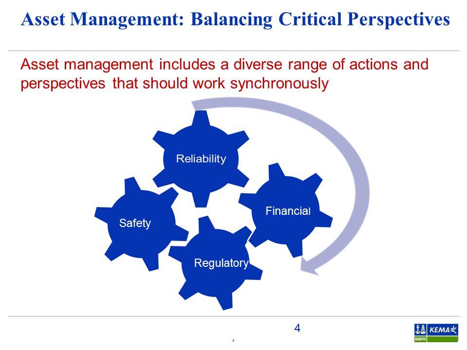 Asset Management: Balancing Critical Perspectives