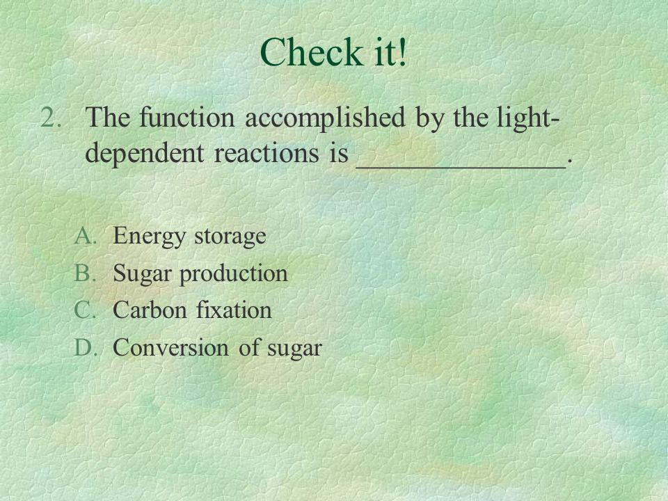 Check it! The function accomplished by the light-dependent reactions is ______________. Energy storage.