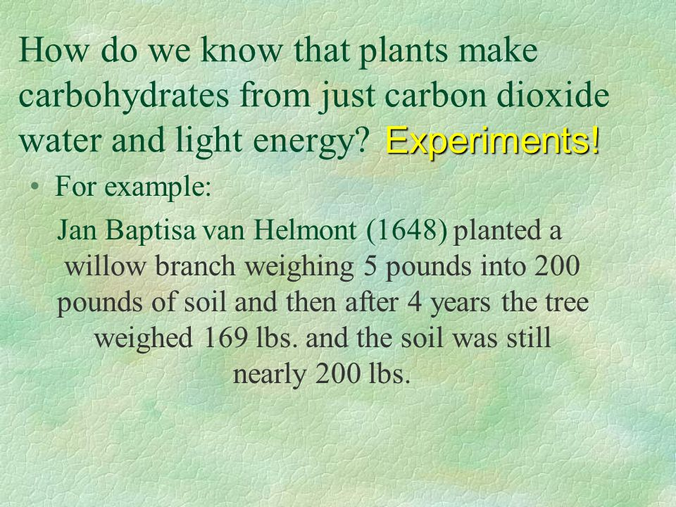 How do we know that plants make carbohydrates from just carbon dioxide water and light energy