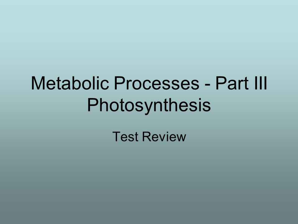Metabolic Processes - Part III Photosynthesis