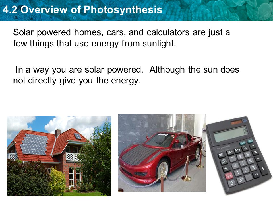 Solar powered homes, cars, and calculators are just a few things that use energy from sunlight.