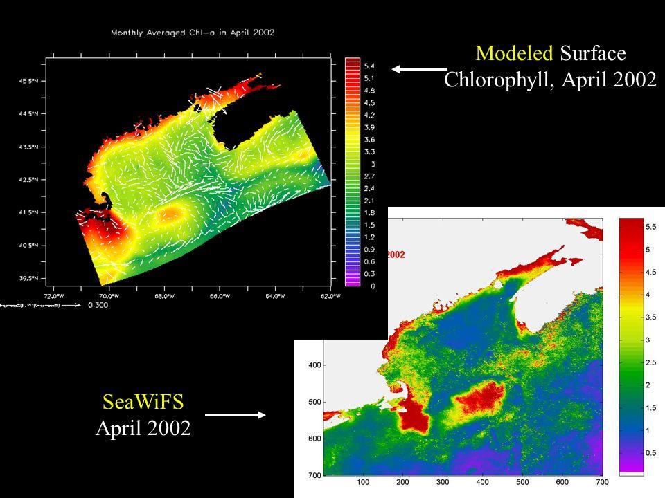 Modeled Surface Chlorophyll, April 2002 SeaWiFS April 2002