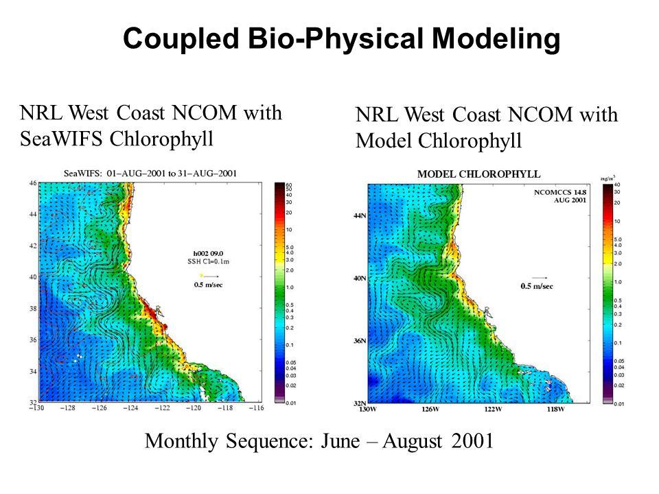 Coupled Bio-Physical Modeling