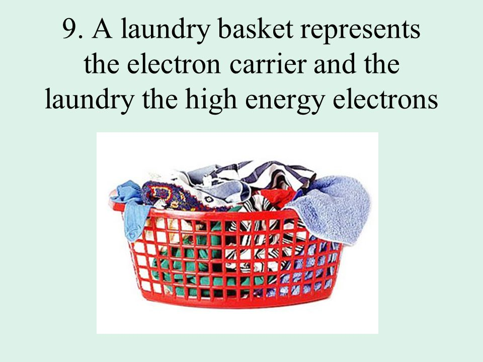 9. A laundry basket represents the electron carrier and the laundry the high energy electrons