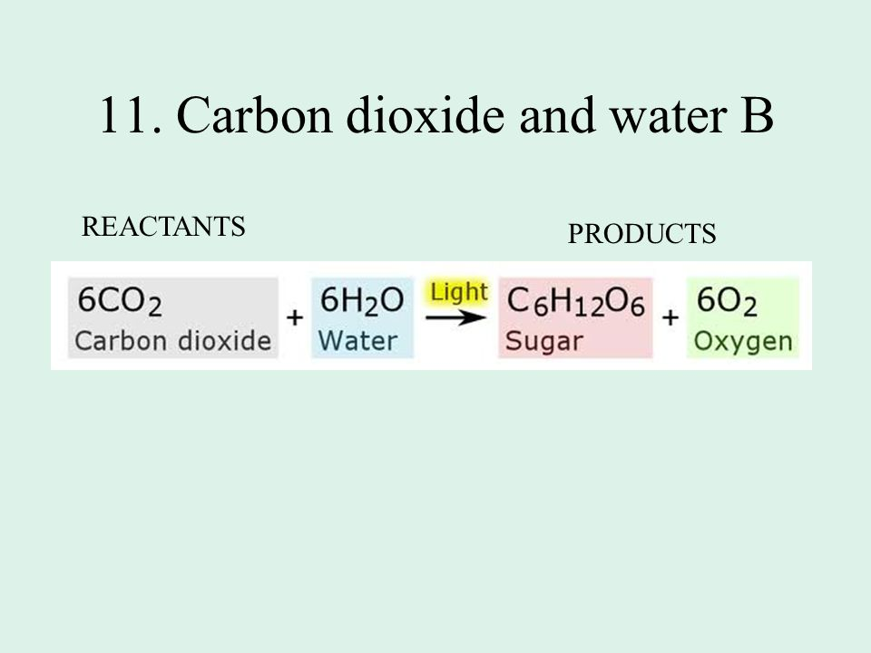 11. Carbon dioxide and water B