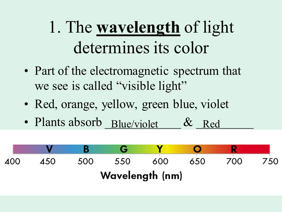 1. The wavelength of light determines its color