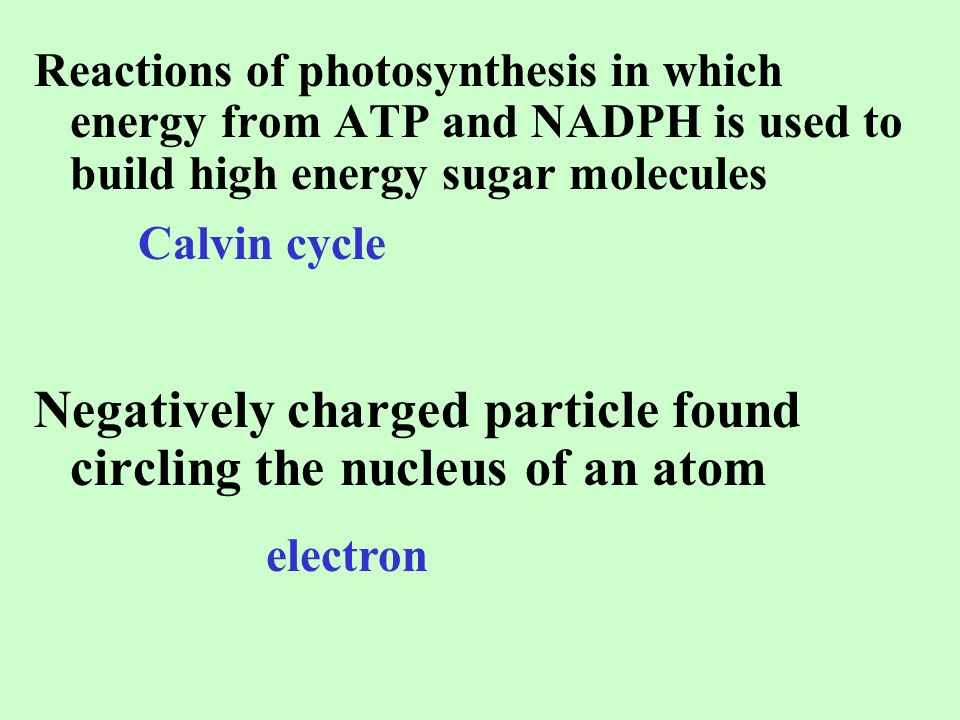 Negatively charged particle found circling the nucleus of an atom