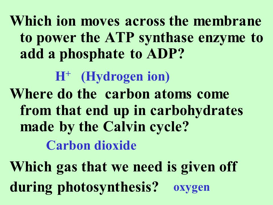 Which gas that we need is given off during photosynthesis