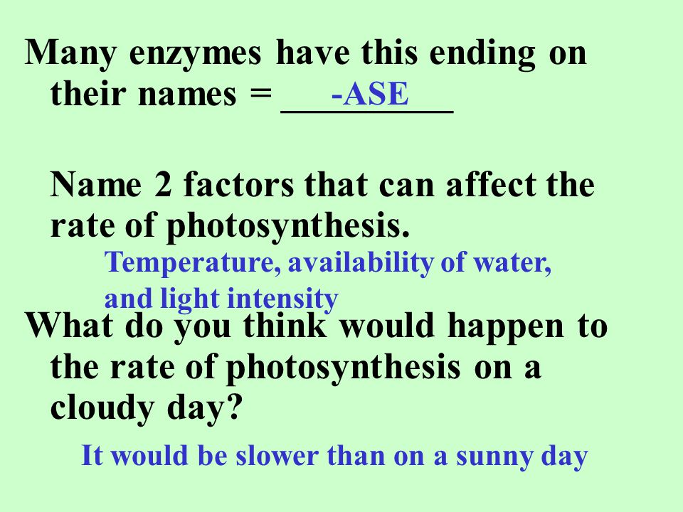 Many enzymes have this ending on their names = _________