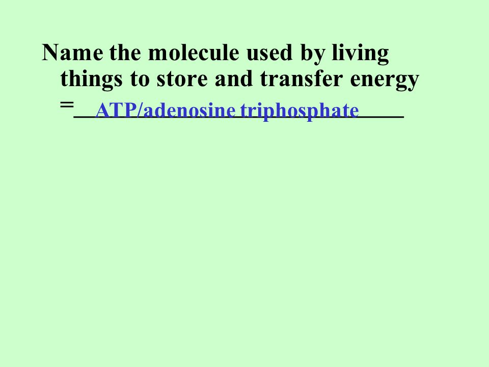 Name the molecule used by living things to store and transfer energy =___________________________