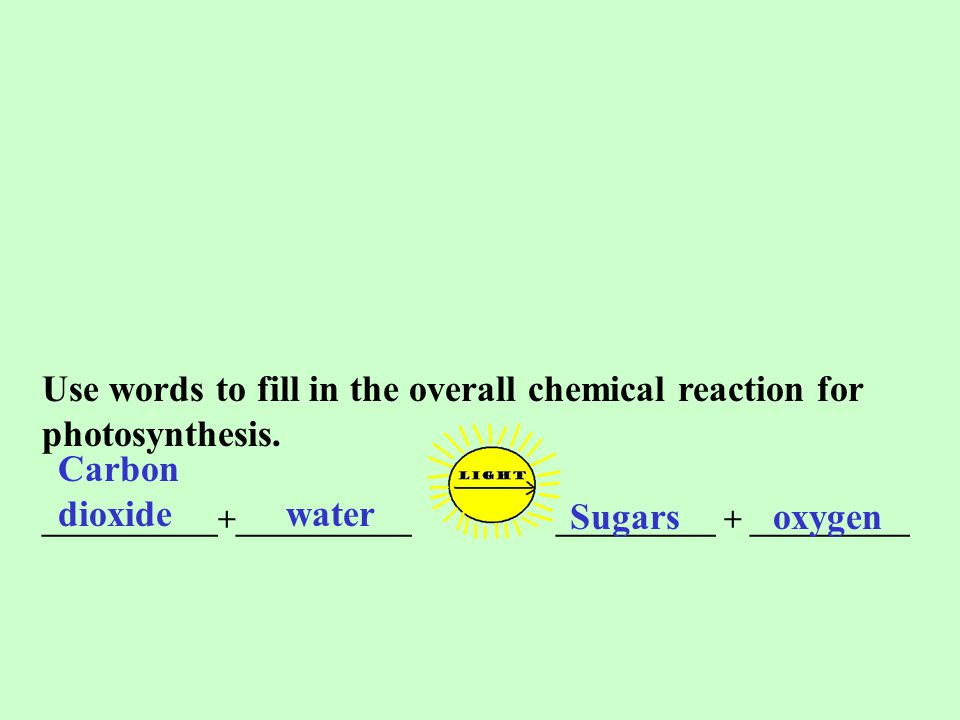 Use words to fill in the overall chemical reaction for photosynthesis.