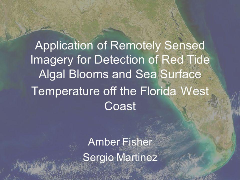 Amber Fisher Sergio Martinez