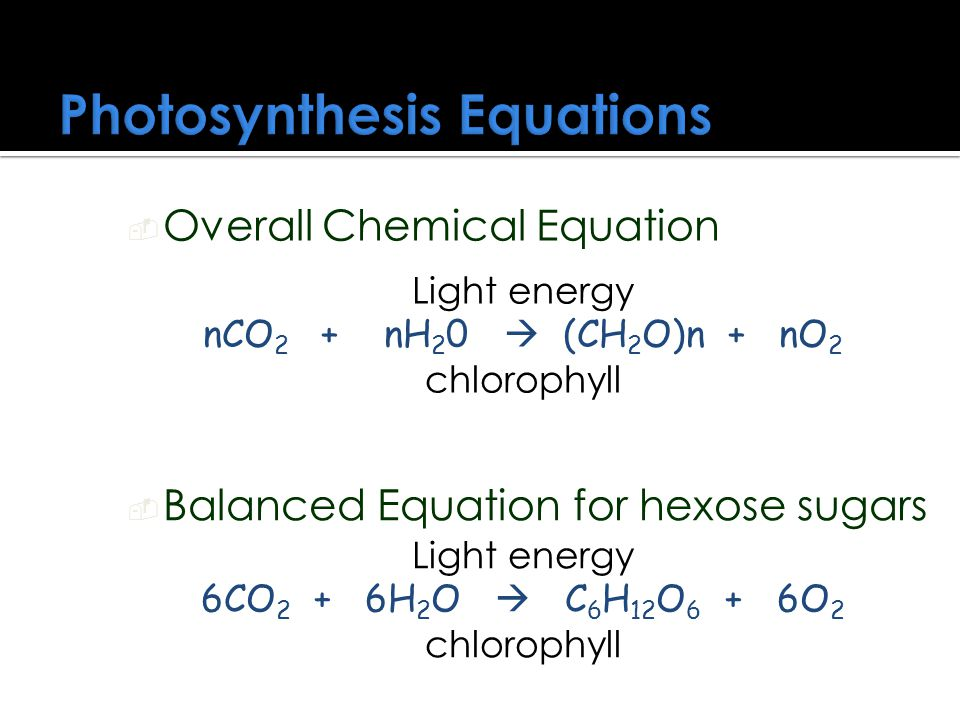 Photosynthesis Equations
