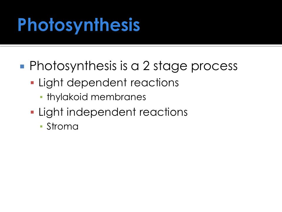 Photosynthesis Photosynthesis is a 2 stage process