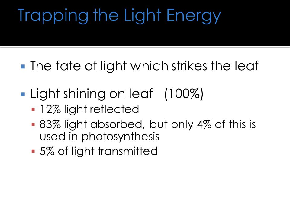Trapping the Light Energy
