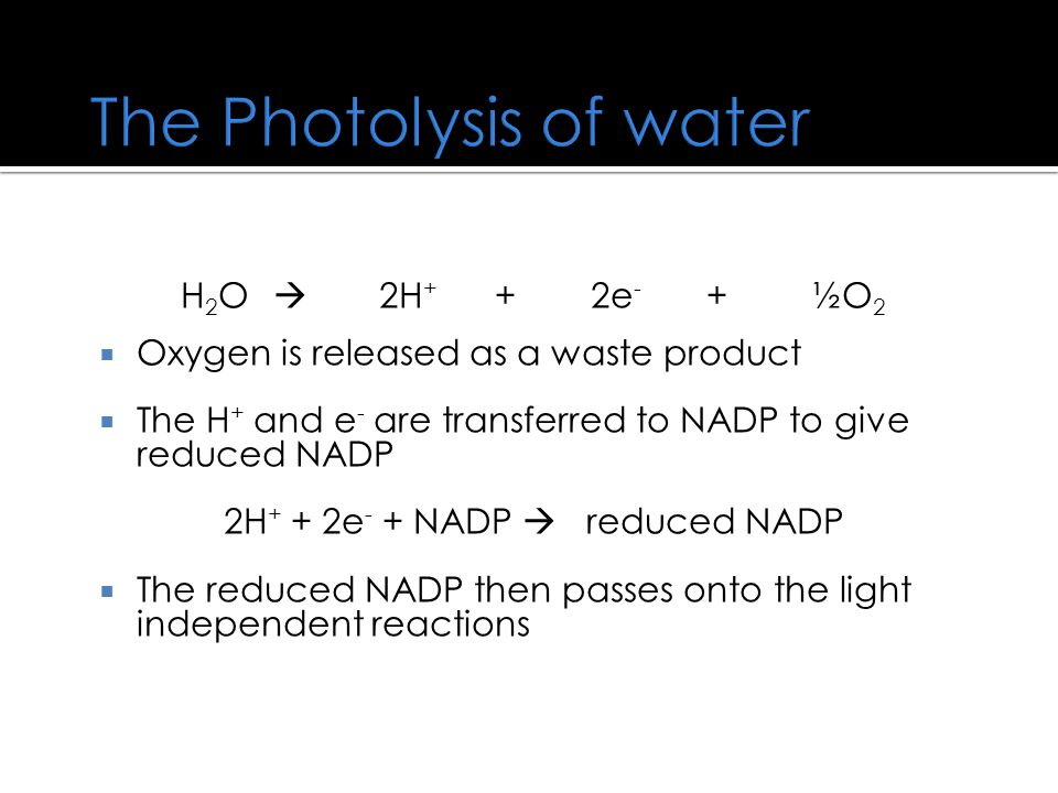 The Photolysis of water
