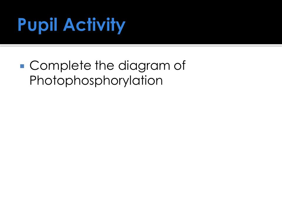 Pupil Activity Complete the diagram of Photophosphorylation