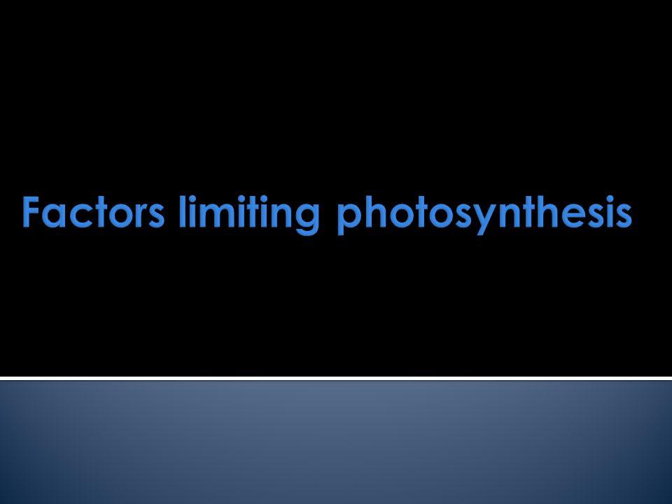 Factors limiting photosynthesis