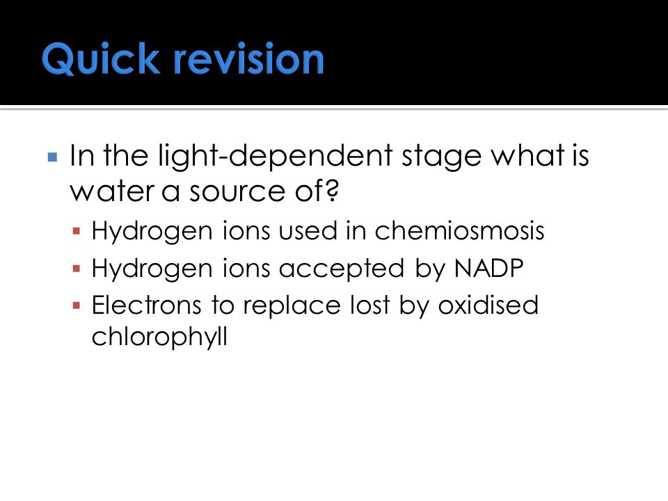 Quick revision In the light-dependent stage what is water a source of