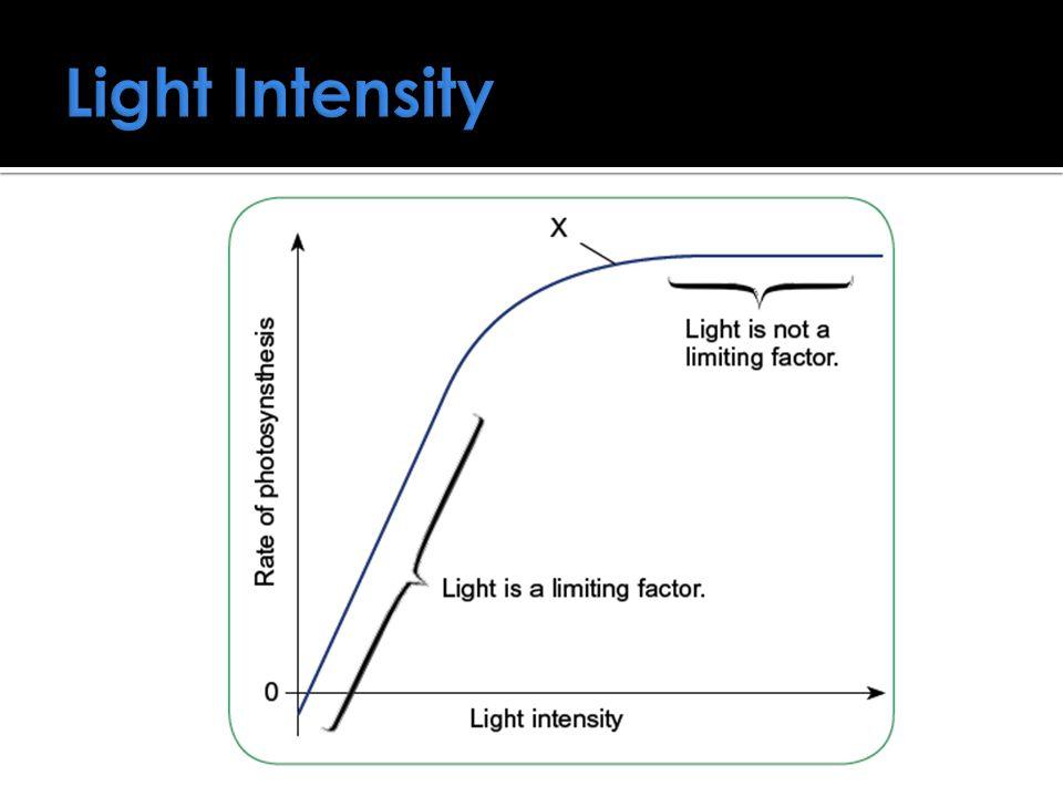 Light Intensity
