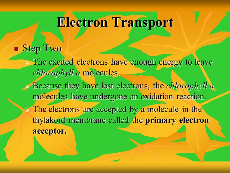 Electron Transport Step Two
