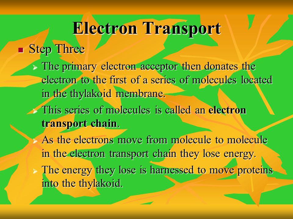 Electron Transport Step Three