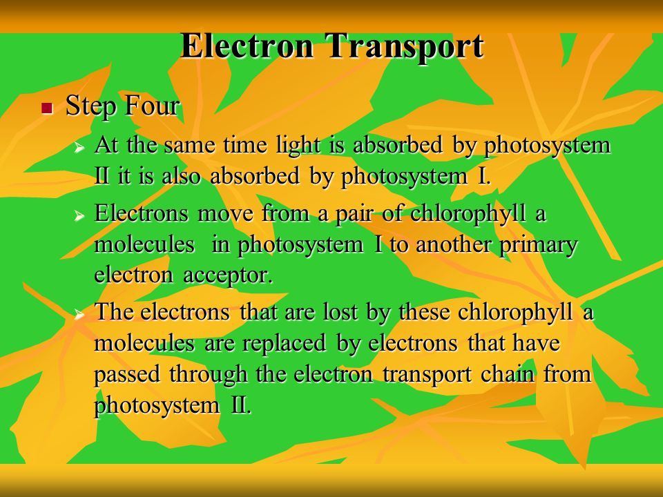 Electron Transport Step Four