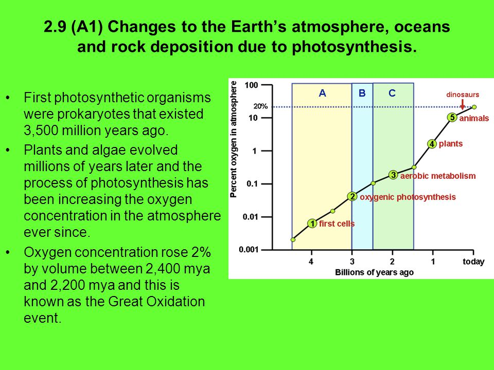 2.9 (A1) Changes to the Earth's atmosphere, oceans and rock deposition due to photosynthesis.
