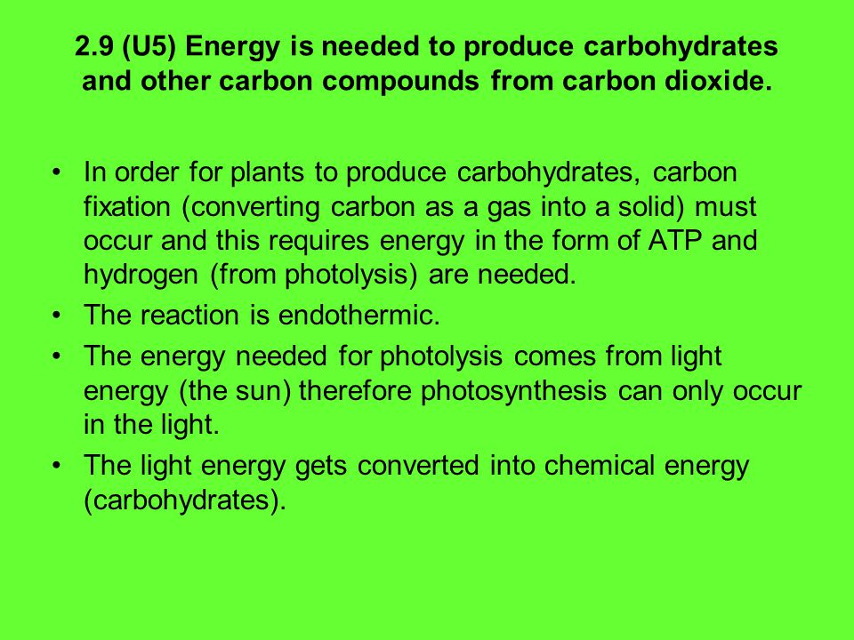 2.9 (U5) Energy is needed to produce carbohydrates and other carbon compounds from carbon dioxide.