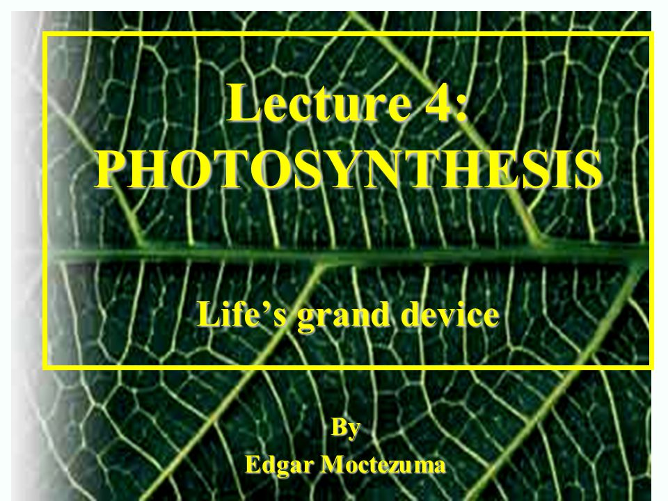 Lecture 4: PHOTOSYNTHESIS Life's grand device