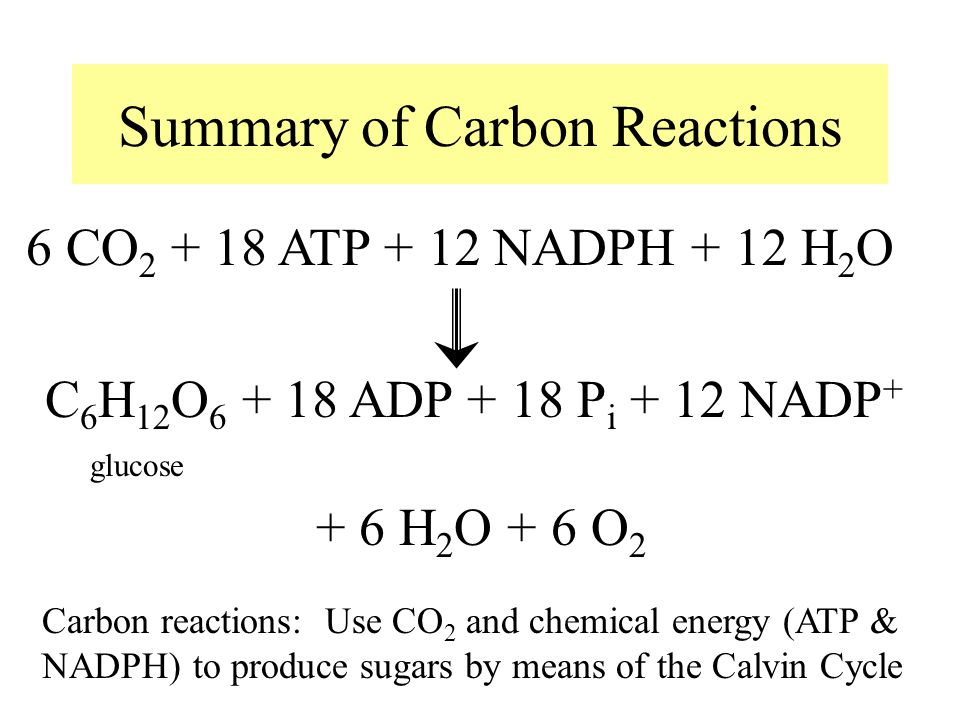 Summary of Carbon Reactions