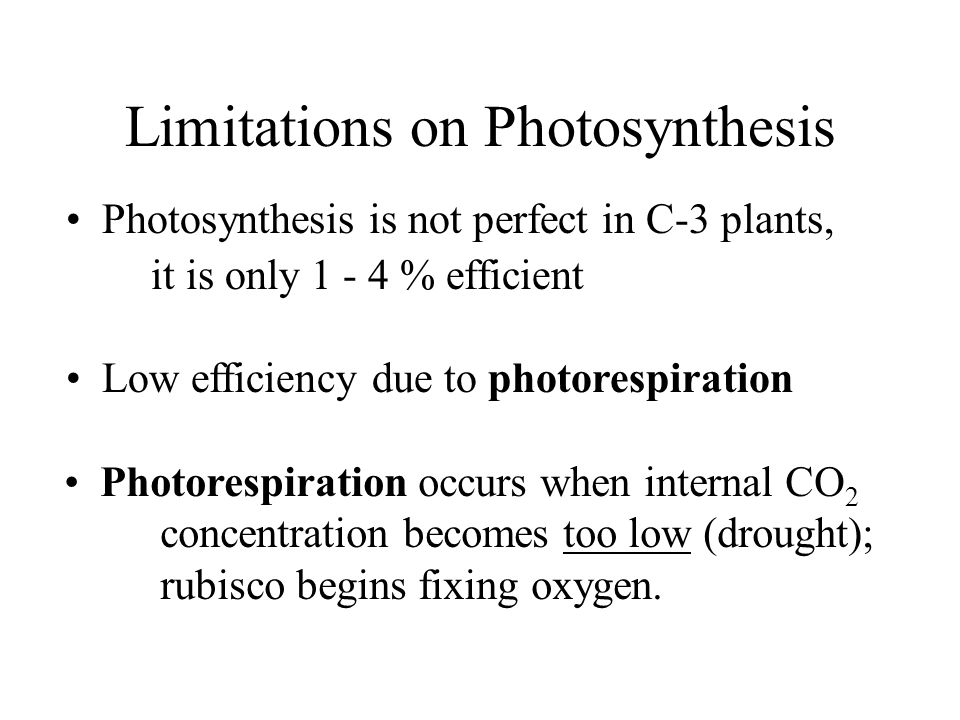 Limitations on Photosynthesis