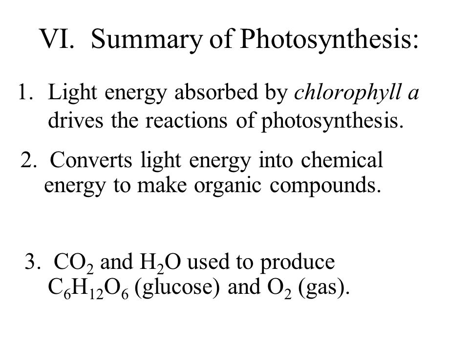 VI. Summary of Photosynthesis: